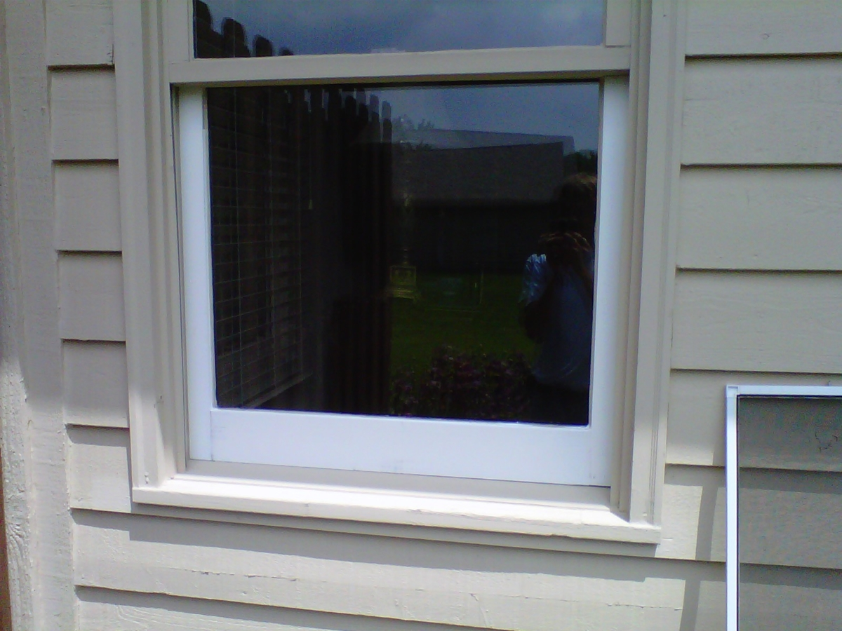 Replacement Sashes For Double Hung Windows Mycoffeepot Org