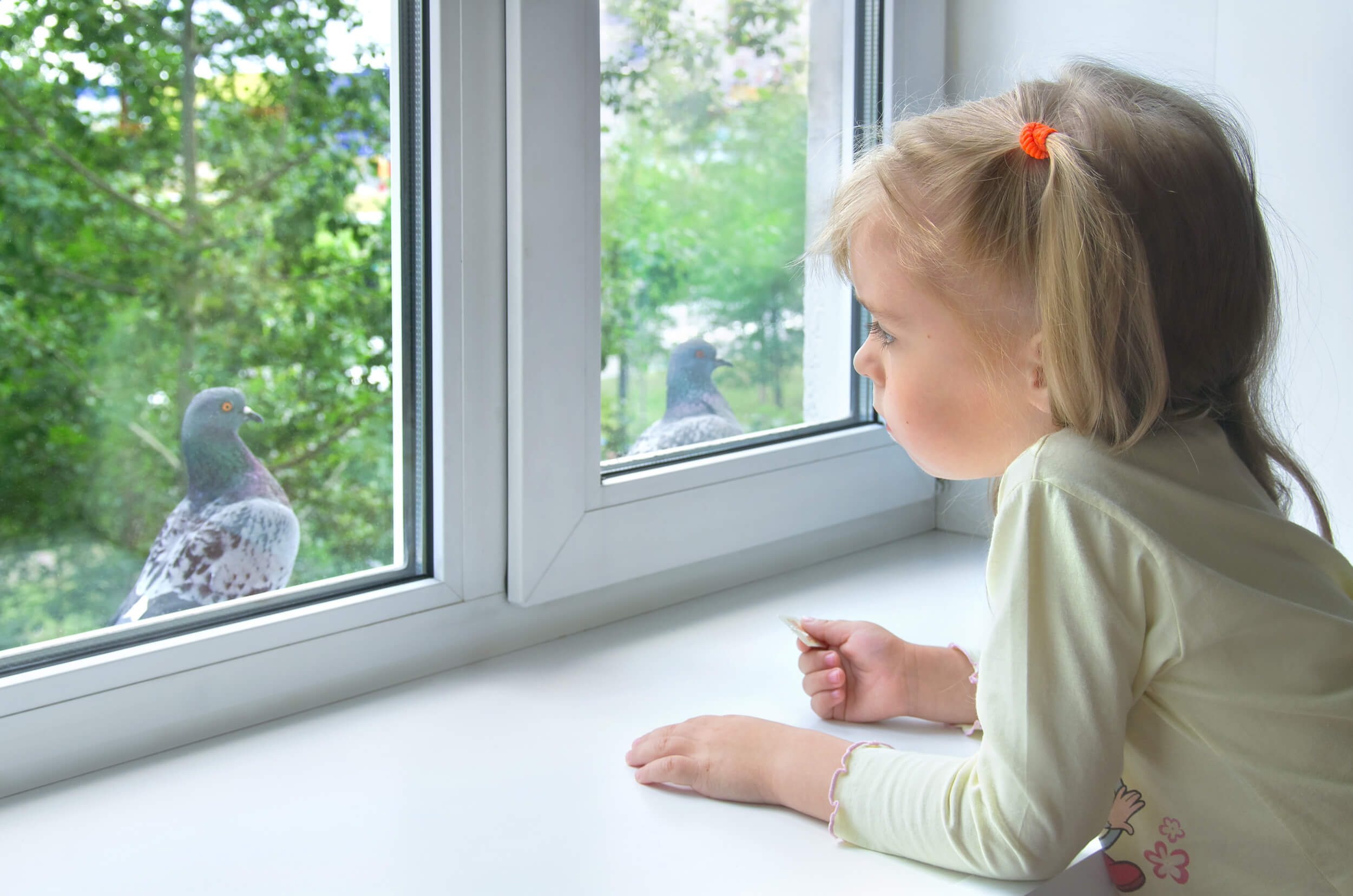 Little girl looking at birds through the window of her home | Window Makeover | Home Windows