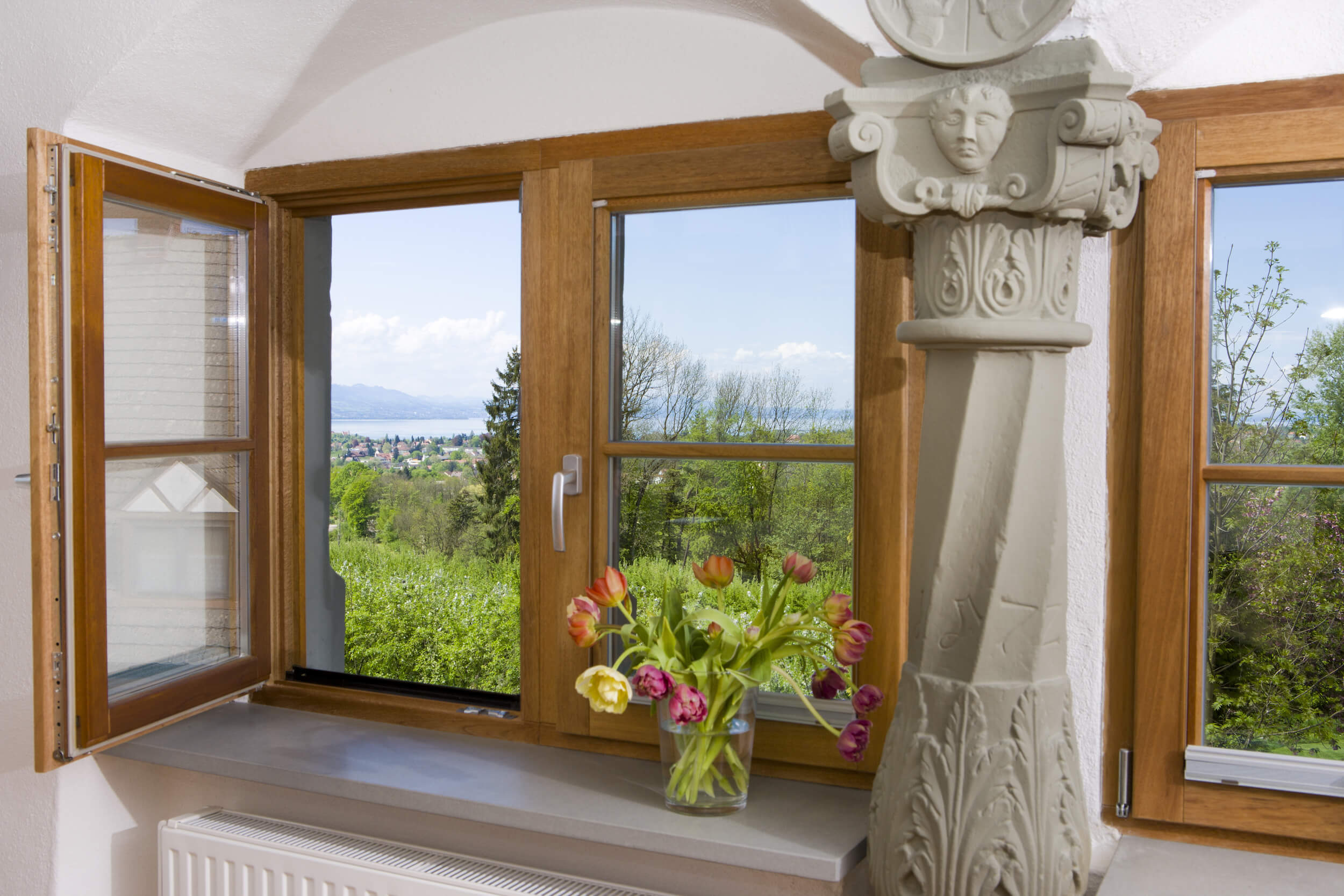 Older wooden windows overlooking a trees | Window Replacement | Window Makeover
