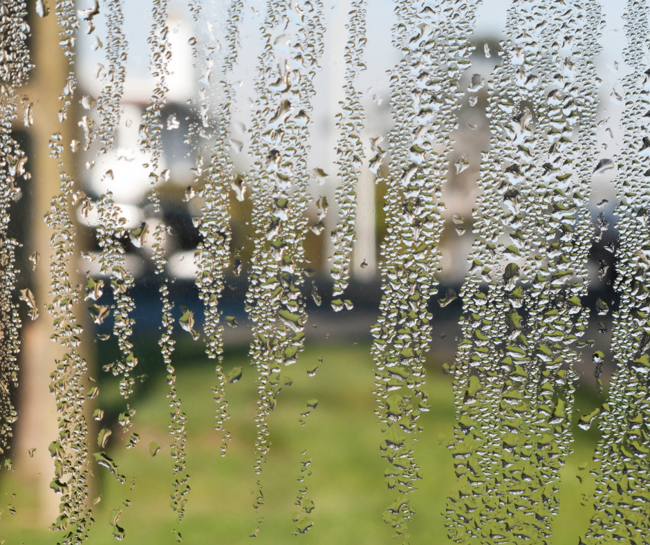 window_condensation